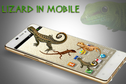 Lizard in mobile